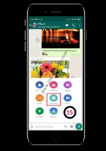 Open WhatsApp Chat